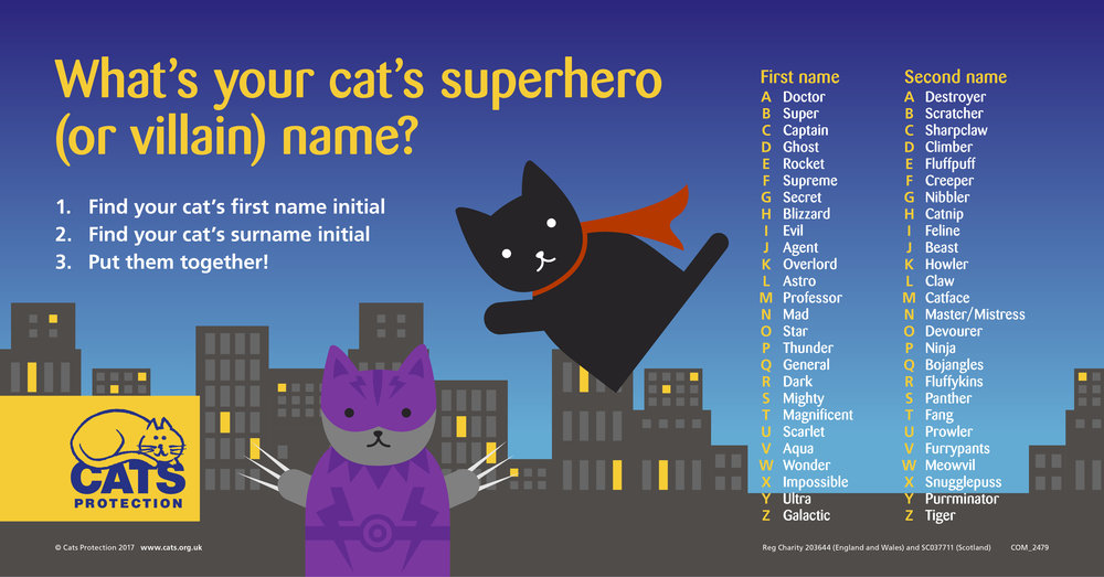 Cat Superhero Name Generator - Enchanted Little World
